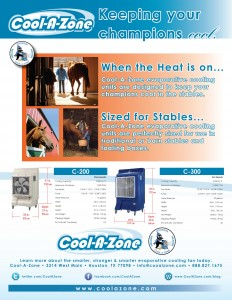coolazone-equestrian-flyer
